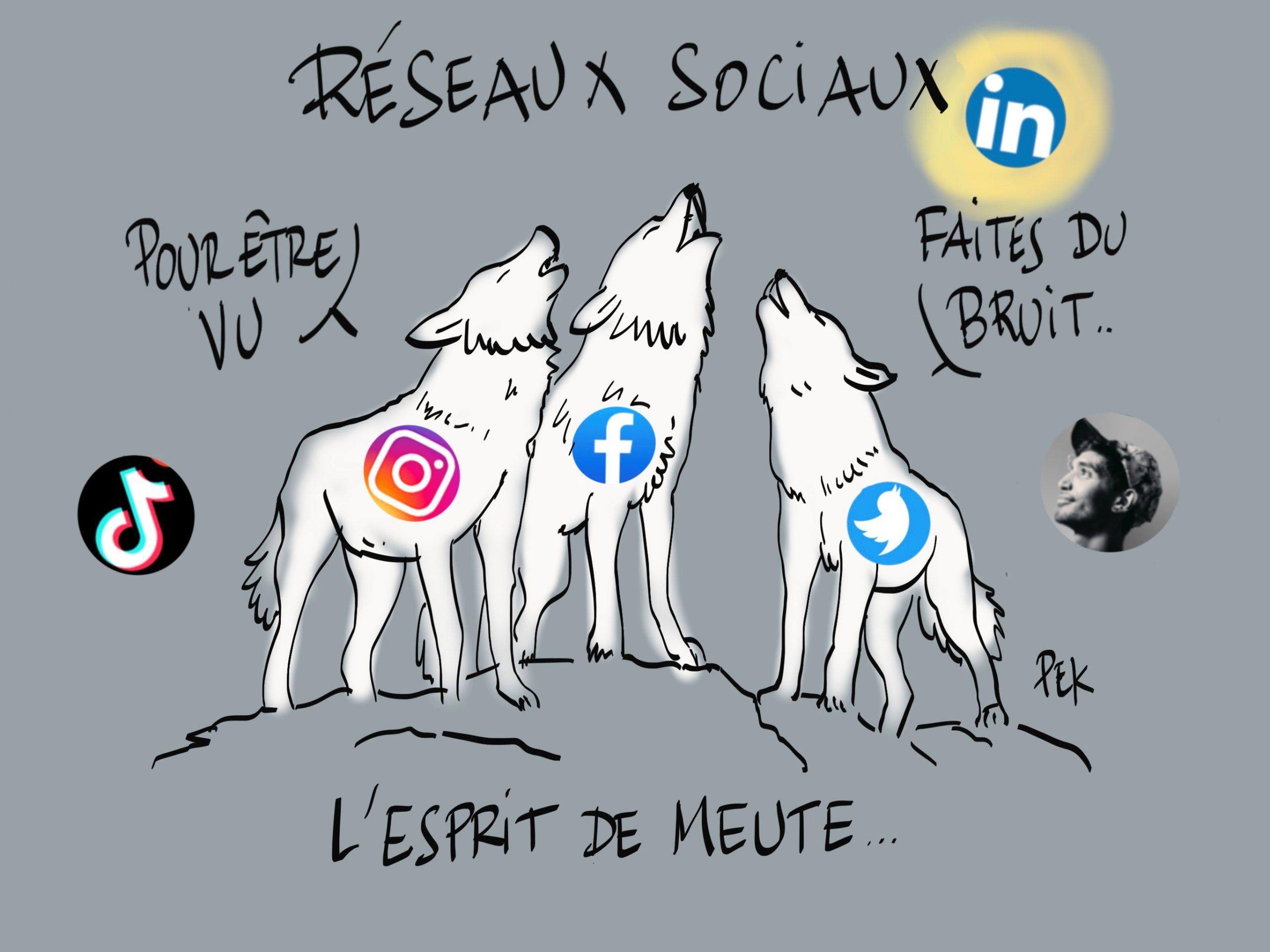 Réseaux sociaux meute illustration PEK Philippe-Elie Kassabi